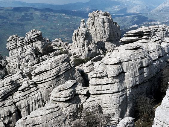 Dating rotsen en fossielen met behulp van geologic methoden Abigail Bretagne dating